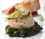 Broiled Scallops with Coconut Creamed Spinach