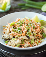 Chicken, Cabbage & Carrot Slaw (AIP)