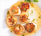 Pan-Seared Sea Scallops (Dairy Free)