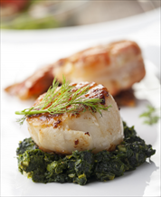 Quick Broiled Scallops over Coconut-Creamed Spinach