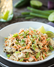 Quick Chicken, Cabbage and Carrot Slaw