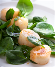 Quick Scallop and Arugula Salad